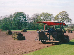 Industrial turf laying by machine