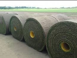 Big roll turf available for large areas